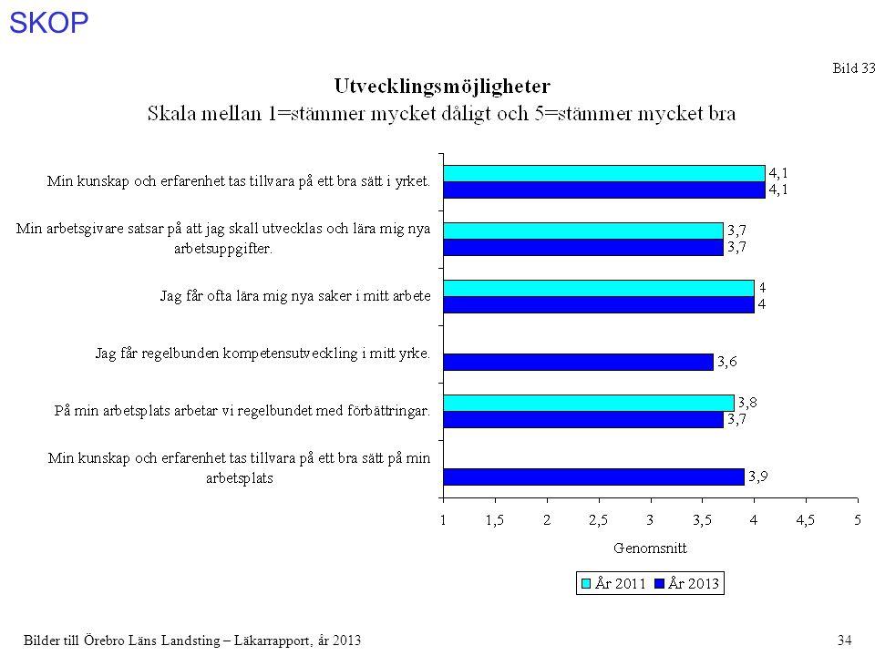 SKOP Bilder till Örebro Läns Landsting – Läkarrapport, år 201334