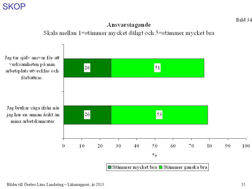 SKOP Bilder till Örebro Läns Landsting – Läkarrapport, år 201335