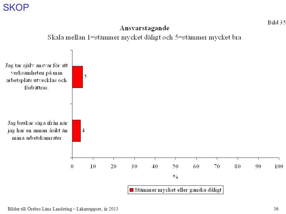 SKOP Bilder till Örebro Läns Landsting – Läkarrapport, år 201336