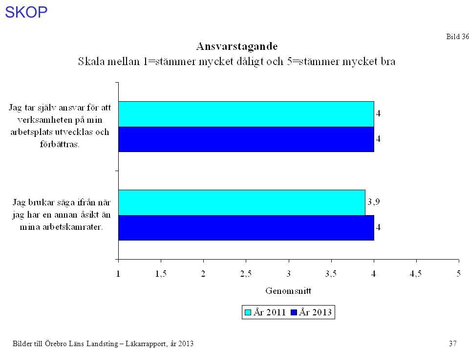 SKOP Bilder till Örebro Läns Landsting – Läkarrapport, år 201337