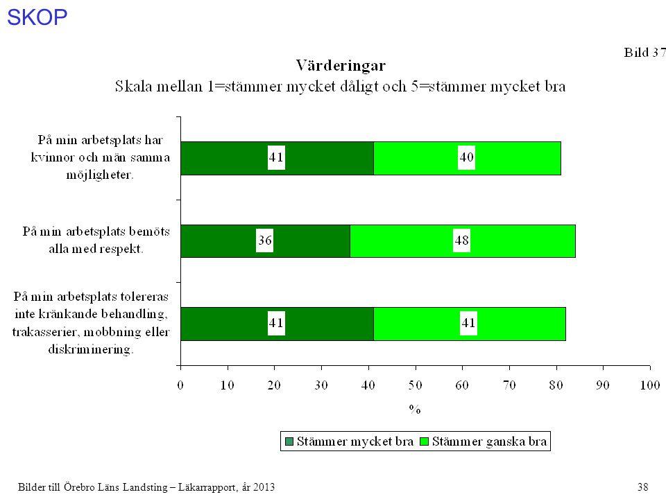 SKOP Bilder till Örebro Läns Landsting – Läkarrapport, år 201338