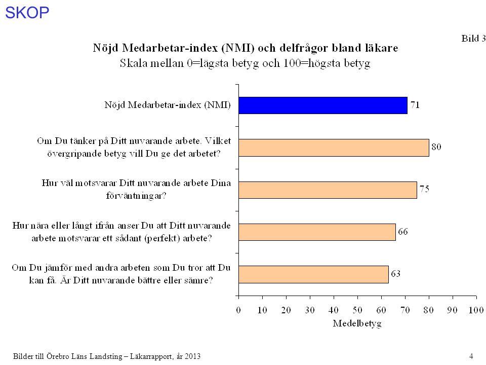 SKOP Bilder till Örebro Läns Landsting – Läkarrapport, år 201375