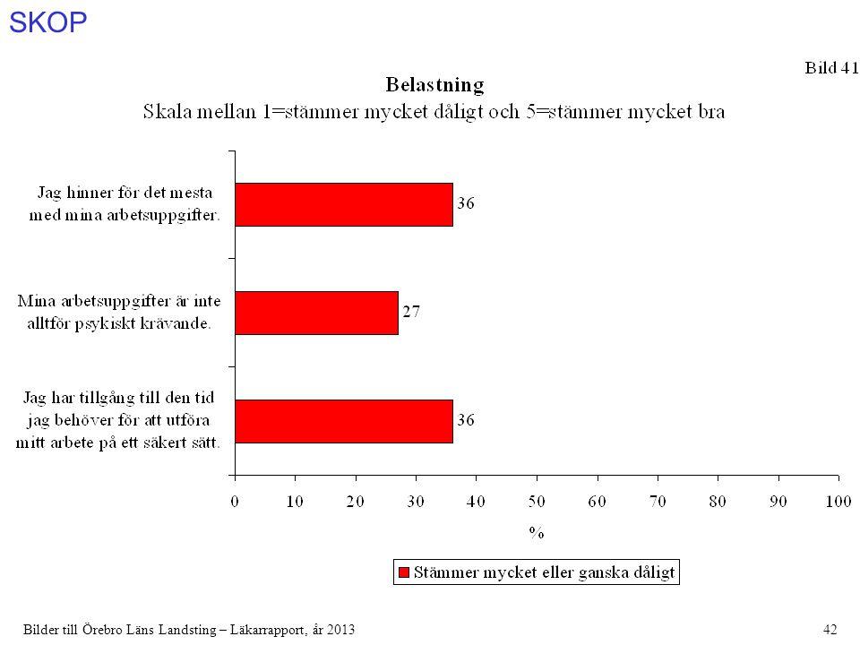 SKOP Bilder till Örebro Läns Landsting – Läkarrapport, år 201342