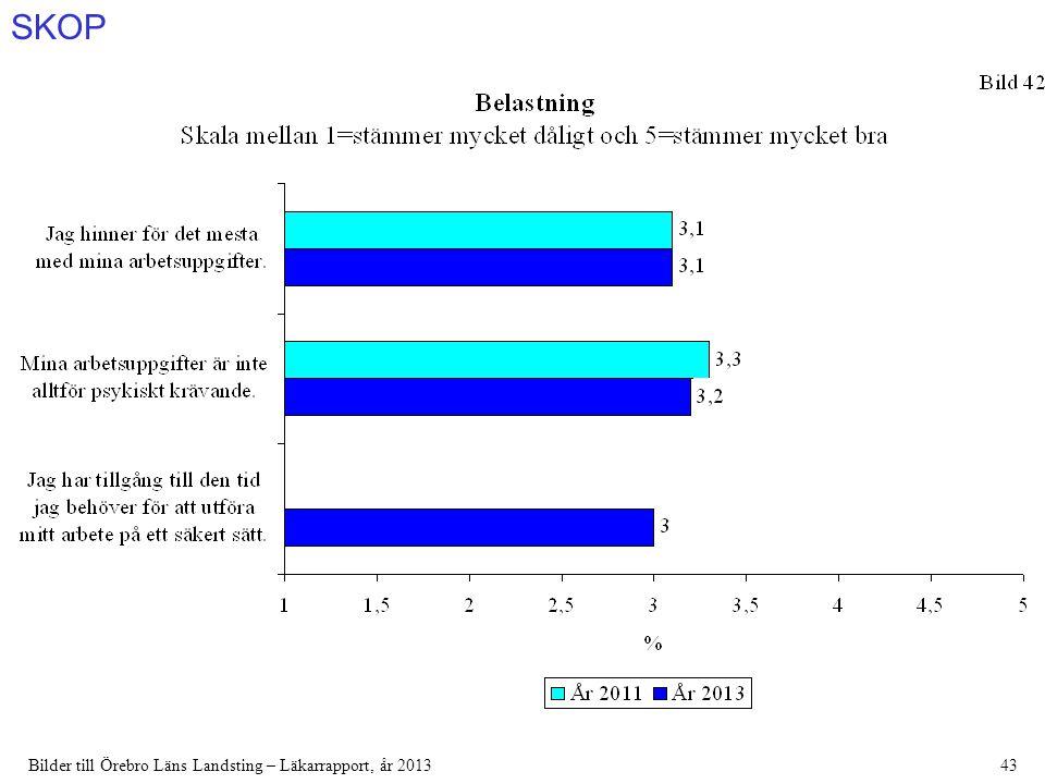 SKOP Bilder till Örebro Läns Landsting – Läkarrapport, år 201343