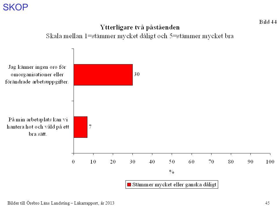 SKOP Bilder till Örebro Läns Landsting – Läkarrapport, år 201345