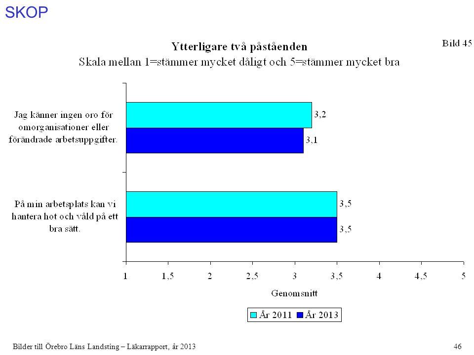 SKOP Bilder till Örebro Läns Landsting – Läkarrapport, år 201346