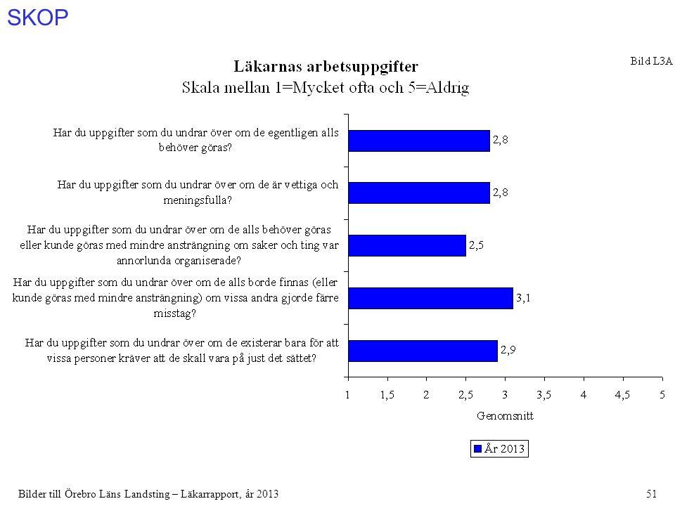 SKOP Bilder till Örebro Läns Landsting – Läkarrapport, år 201351