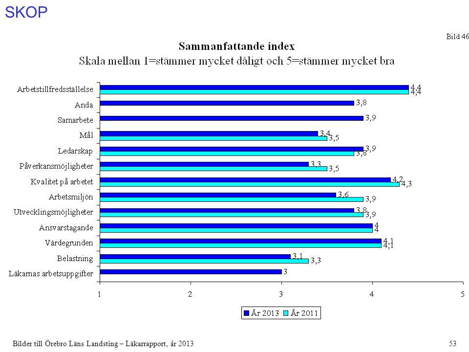 SKOP Bilder till Örebro Läns Landsting – Läkarrapport, år 201353