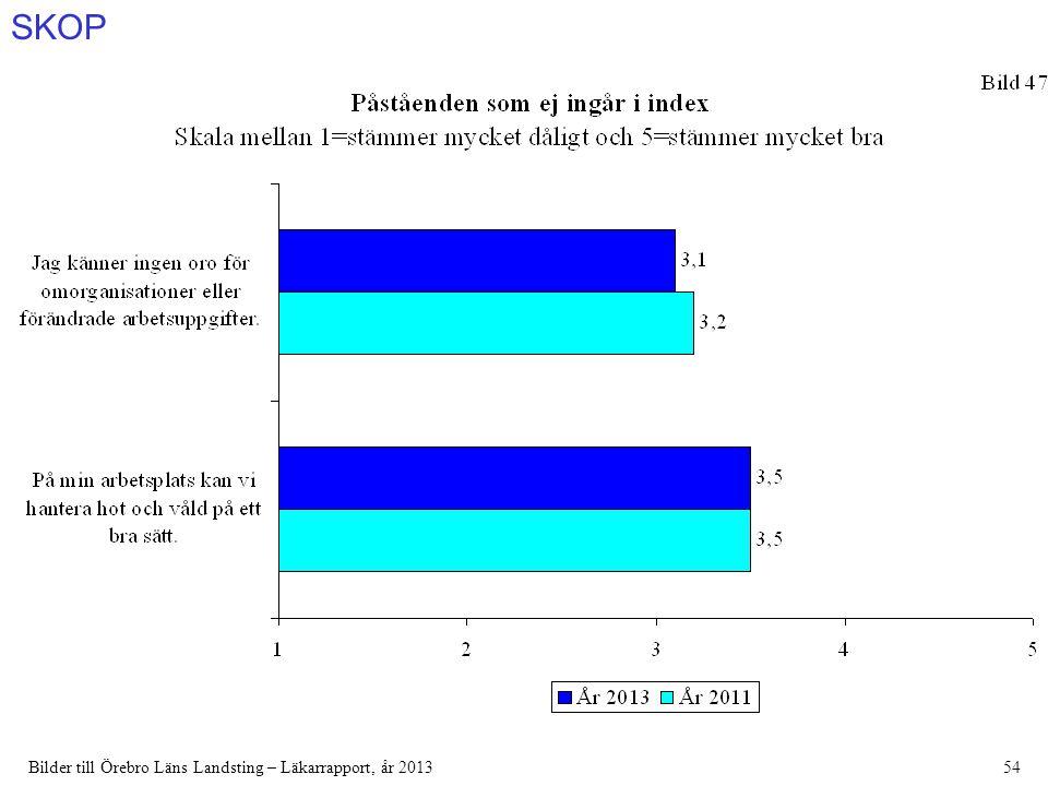 SKOP Bilder till Örebro Läns Landsting – Läkarrapport, år 201354