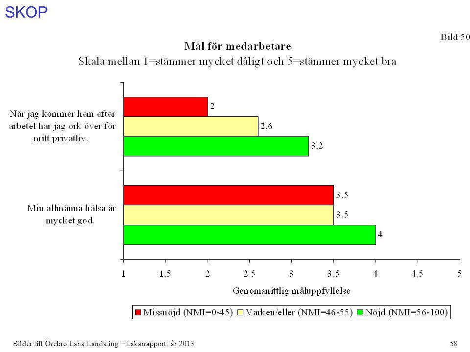 SKOP Bilder till Örebro Läns Landsting – Läkarrapport, år 201358