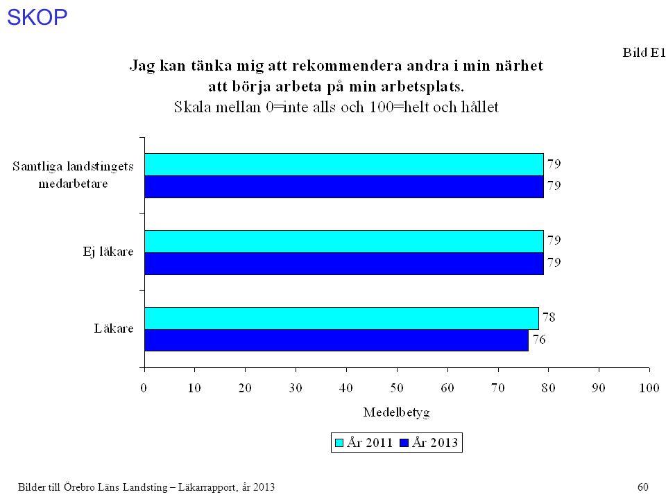 SKOP Bilder till Örebro Läns Landsting – Läkarrapport, år 201360
