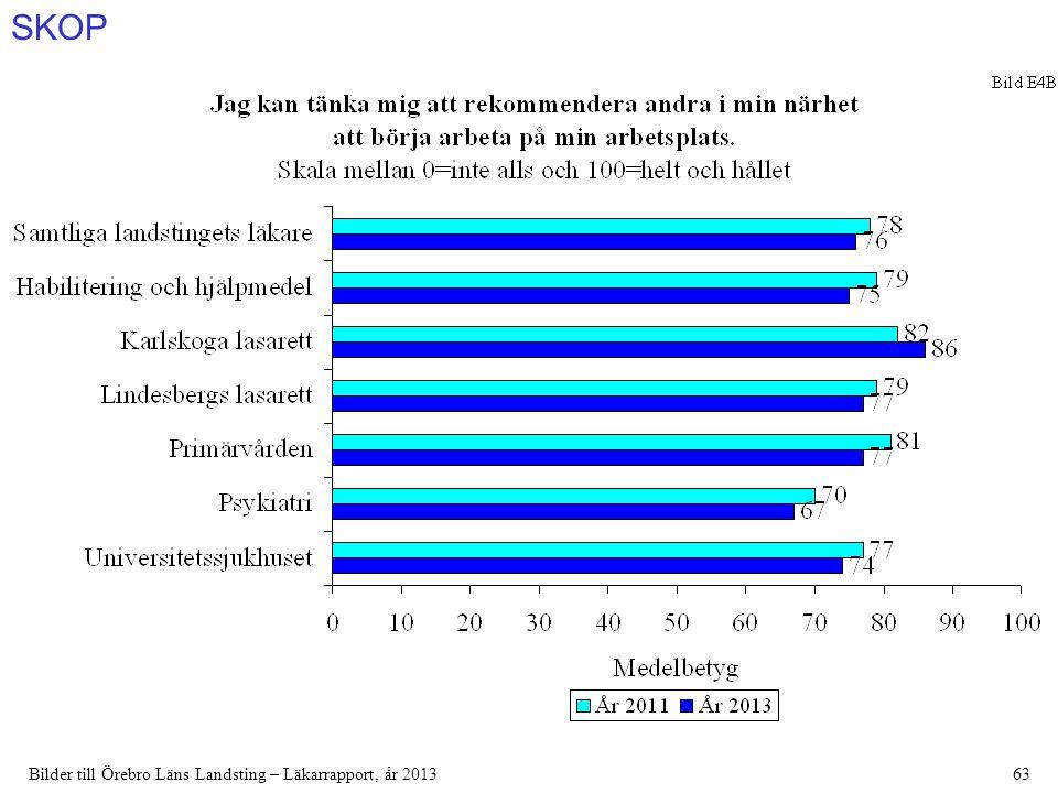 SKOP Bilder till Örebro Läns Landsting – Läkarrapport, år 201363