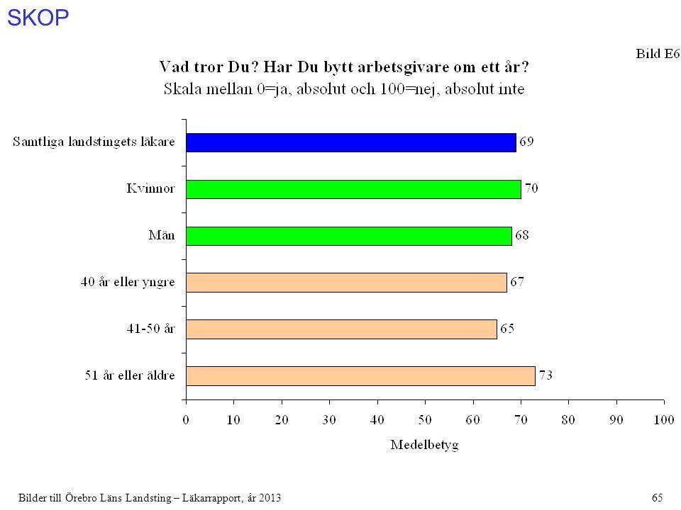 SKOP Bilder till Örebro Läns Landsting – Läkarrapport, år 201365