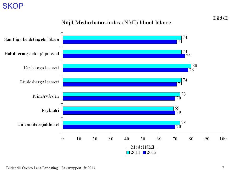 SKOP Bilder till Örebro Läns Landsting – Läkarrapport, år 201328