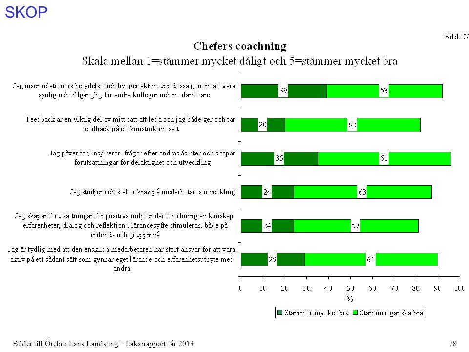 SKOP Bilder till Örebro Läns Landsting – Läkarrapport, år 201378