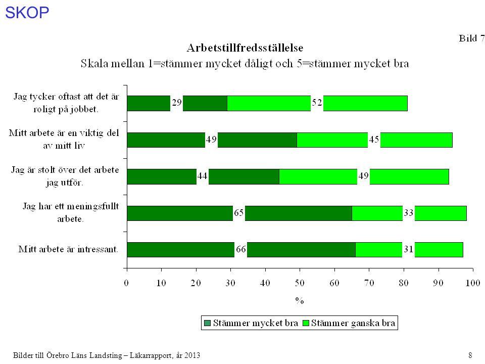 SKOP Bilder till Örebro Läns Landsting – Läkarrapport, år 201339
