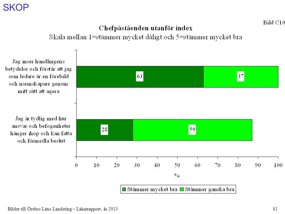 SKOP Bilder till Örebro Läns Landsting – Läkarrapport, år 201381
