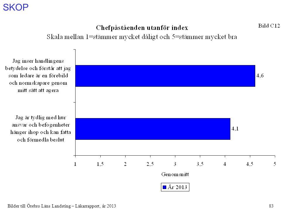 SKOP Bilder till Örebro Läns Landsting – Läkarrapport, år 201383
