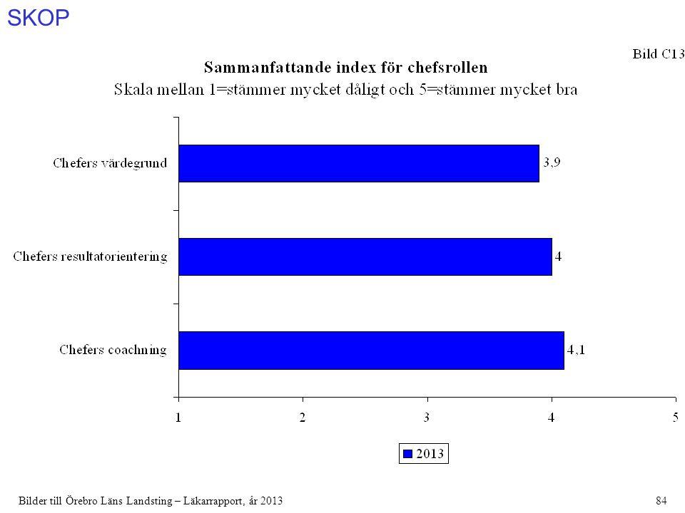 SKOP Bilder till Örebro Läns Landsting – Läkarrapport, år 201384