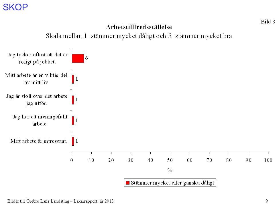 SKOP Bilder till Örebro Läns Landsting – Läkarrapport, år 201380