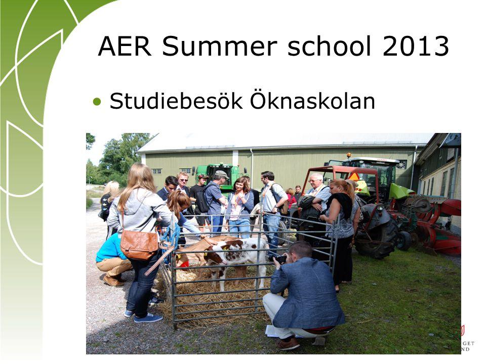 AER Summer school 2013 Studiebesök Öknaskolan