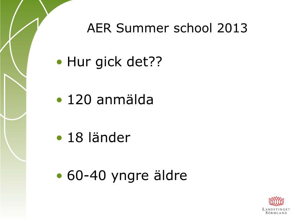 AER Summer school 2013 Hur gick det 120 anmälda 18 länder 60-40 yngre äldre