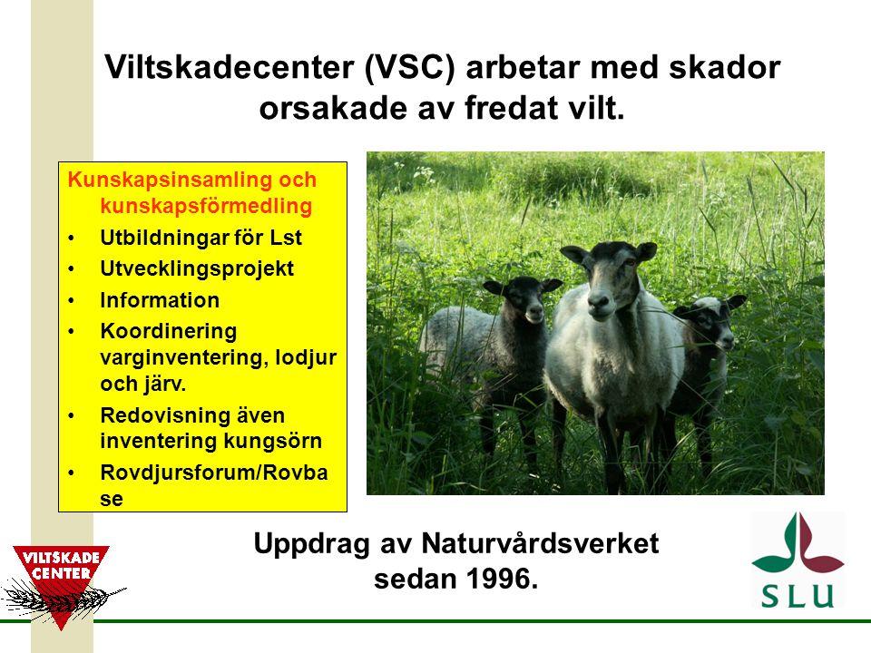 Viltskadecenter (VSC) arbetar med skador orsakade av fredat vilt. Uppdrag av Naturvårdsverket sedan 1996. Kunskapsinsamling och kunskapsförmedling Utb