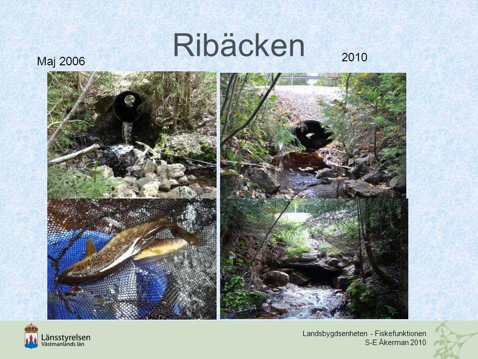 Landsbygdsenheten - Fiskefunktionen S-E Åkerman 2010 Ribäcken Maj 2006 2010