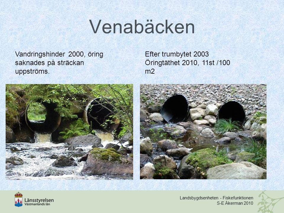 Landsbygdsenheten - Fiskefunktionen S-E Åkerman 2010 Venabäcken Vandringshinder 2000, öring saknades på sträckan uppströms. Efter trumbytet 2003 Öring