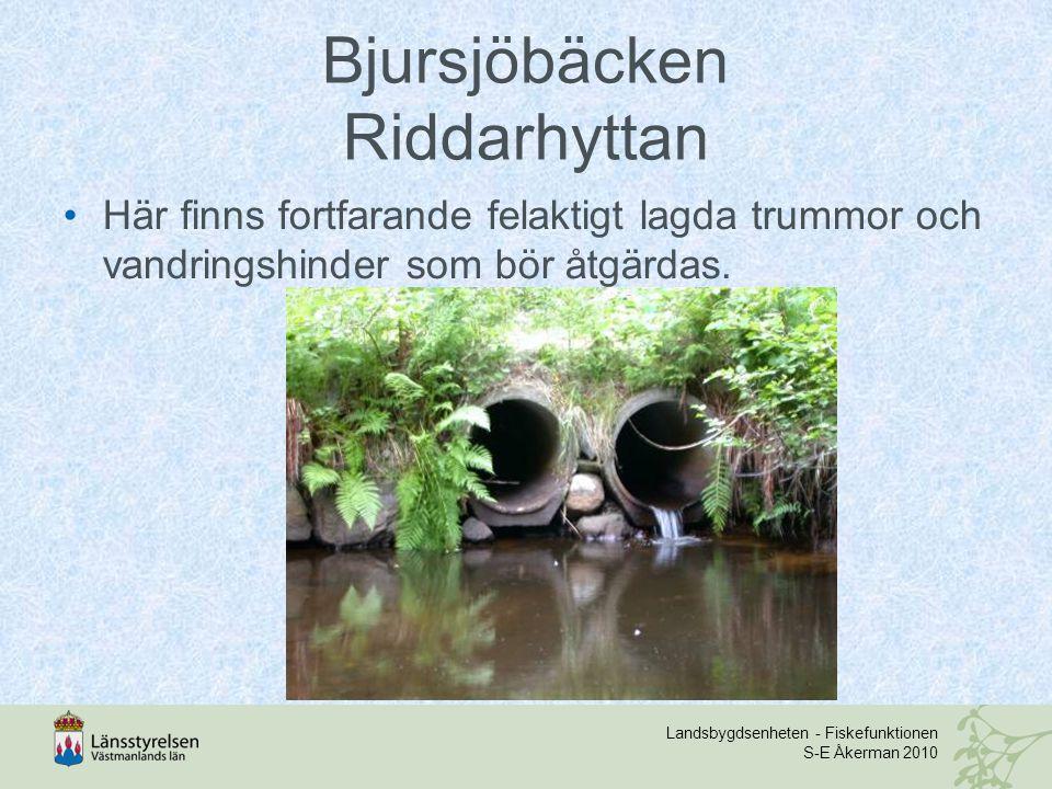 Landsbygdsenheten - Fiskefunktionen S-E Åkerman 2010 Bjursjöbäcken Riddarhyttan Här finns fortfarande felaktigt lagda trummor och vandringshinder som bör åtgärdas.