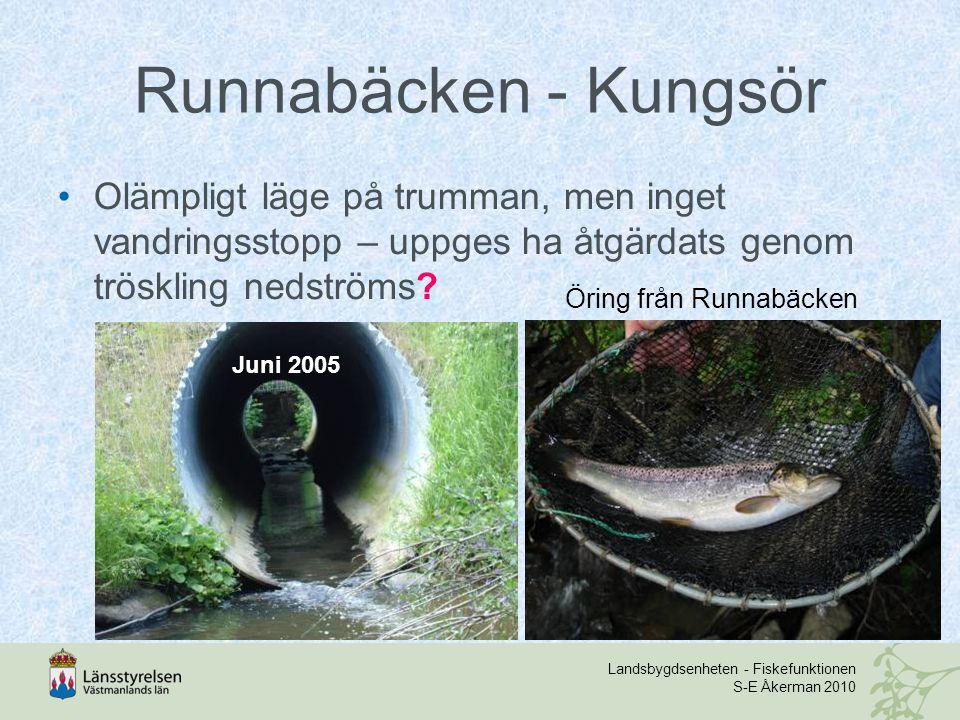 Landsbygdsenheten - Fiskefunktionen S-E Åkerman 2010 Runnabäcken - Kungsör Olämpligt läge på trumman, men inget vandringsstopp – uppges ha åtgärdats g