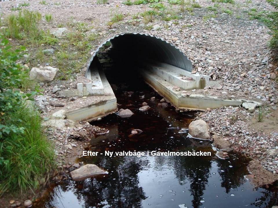 Landsbygdsenheten - Fiskefunktionen S-E Åkerman 2010 Efter - Ny valvbåge i Gavelmossbäcken