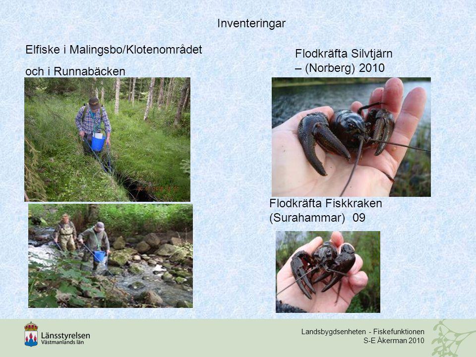 Landsbygdsenheten - Fiskefunktionen S-E Åkerman 2010 hej Elfiske i Malingsbo/Klotenområdet och i Runnabäcken Flodkräfta Silvtjärn – (Norberg) 2010 Flodkräfta Fiskkraken (Surahammar) 09 Inventeringar