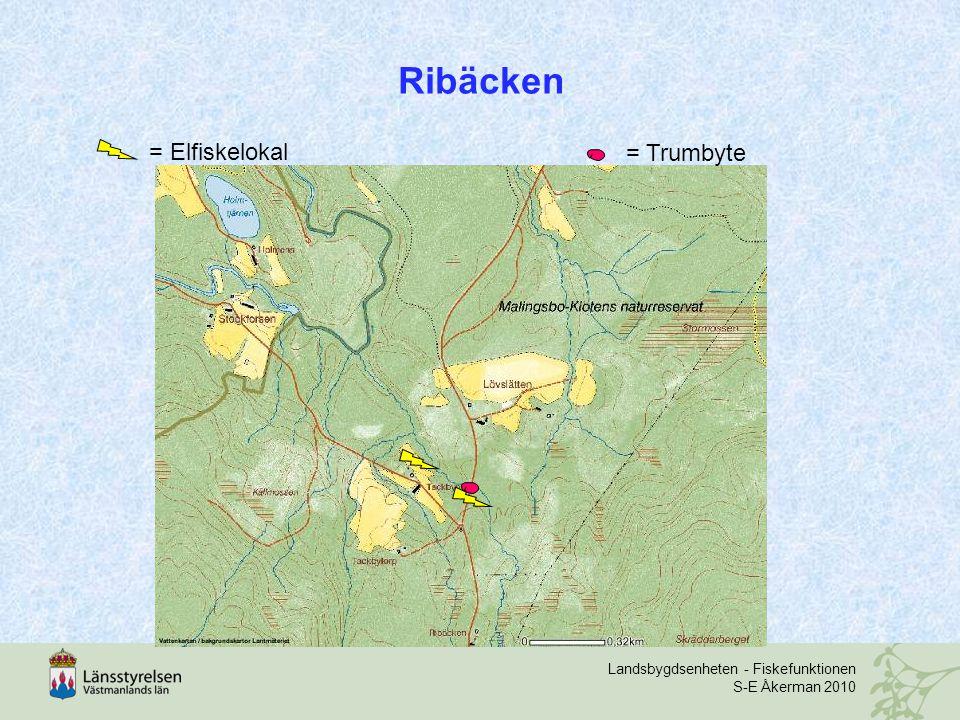 Landsbygdsenheten - Fiskefunktionen S-E Åkerman 2010 Ribäcken = Trumbyte = Elfiskelokal