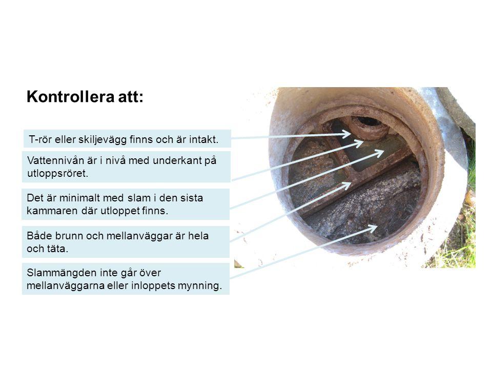 Gråvattenfilter Kontrollera att: Villkor i tillstånd och leverantörens anvisningar om skötsel följs Vattenförbrukningen inte överstiger vad anläggningen är dimensionerad för Bad-,disk- och tvättvatten avleds inte alltid till en markbaserad anläggning utan kan ibland renas i prefabricerade så kallade gråvattenfilter.