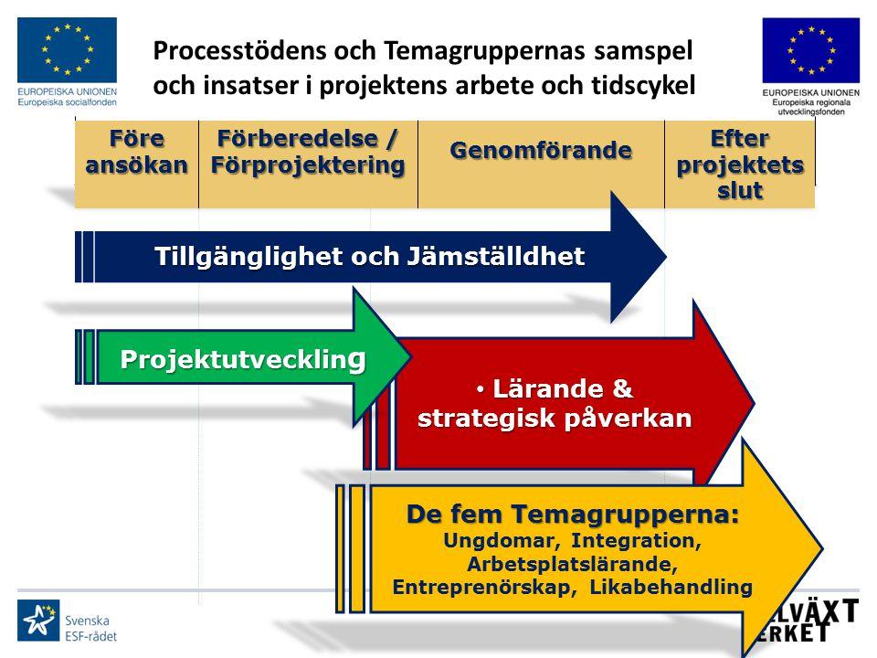 Lärande & strategisk påverkan Lärande & strategisk påverkan Tillgänglighet och Jämställdhet Processtödens och Temagruppernas samspel och insatser i pr