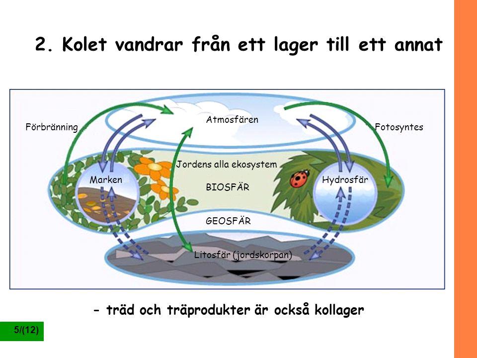 5/(12) 2. Kolet vandrar från ett lager till ett annat Atmosfären Jordens alla ekosystem BIOSFÄR GEOSFÄR Litosfär (jordskorpan) HydrosfärMarken Fotosyn