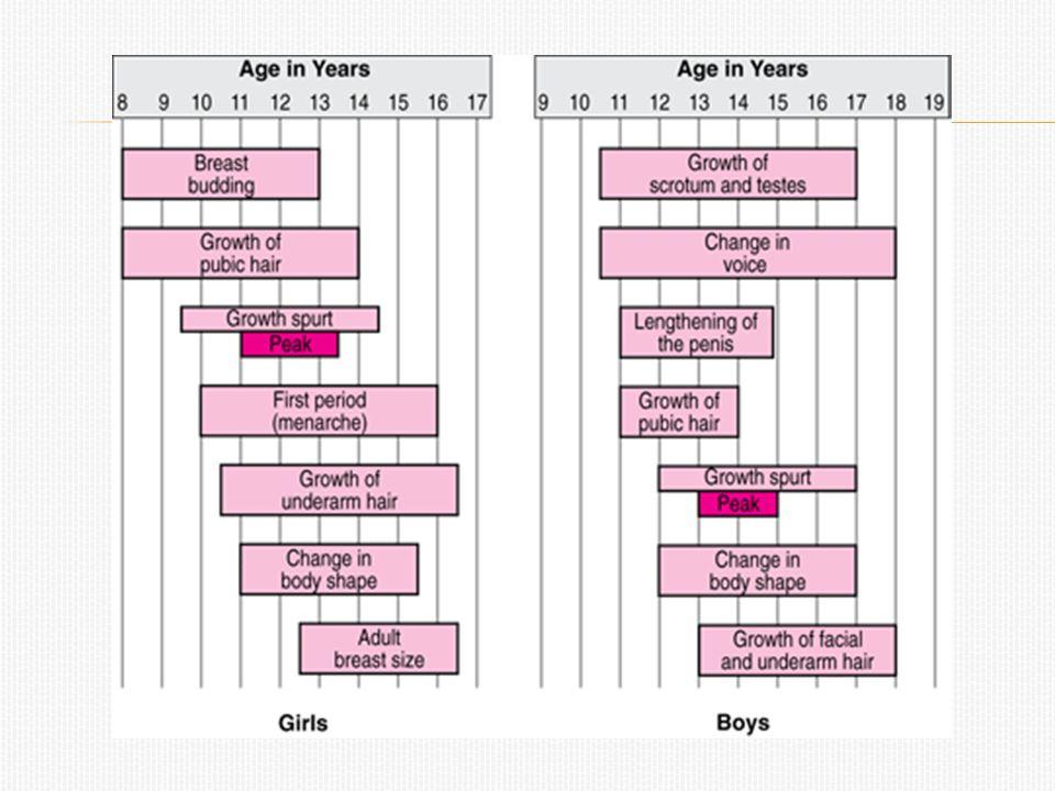 Varje månad byggs slemhinnan i flickans livmoder upp och blir kraftig och blodfyll.