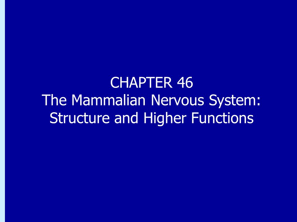 CHAPTER 46 The Mammalian Nervous System: Structure and Higher Functions