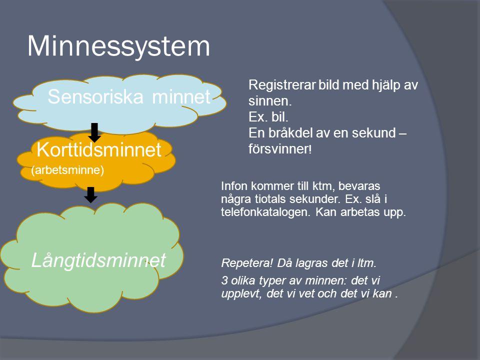 Minnessystem Sensoriska minnet Korttidsminnet (arbetsminne) Infon kommer till ktm, bevaras några tiotals sekunder. Ex. slå i telefonkatalogen. Kan arb