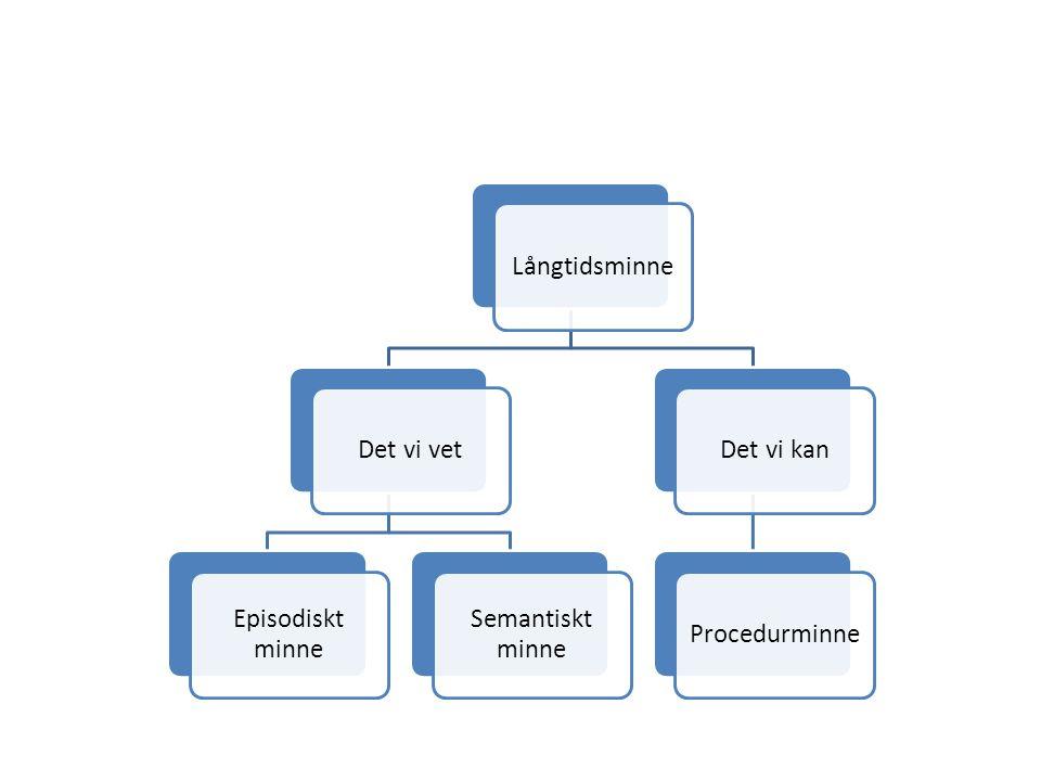 LångtidsminneDet vi vet Episodiskt minne Semantiskt minne Det vi kanProcedurminne