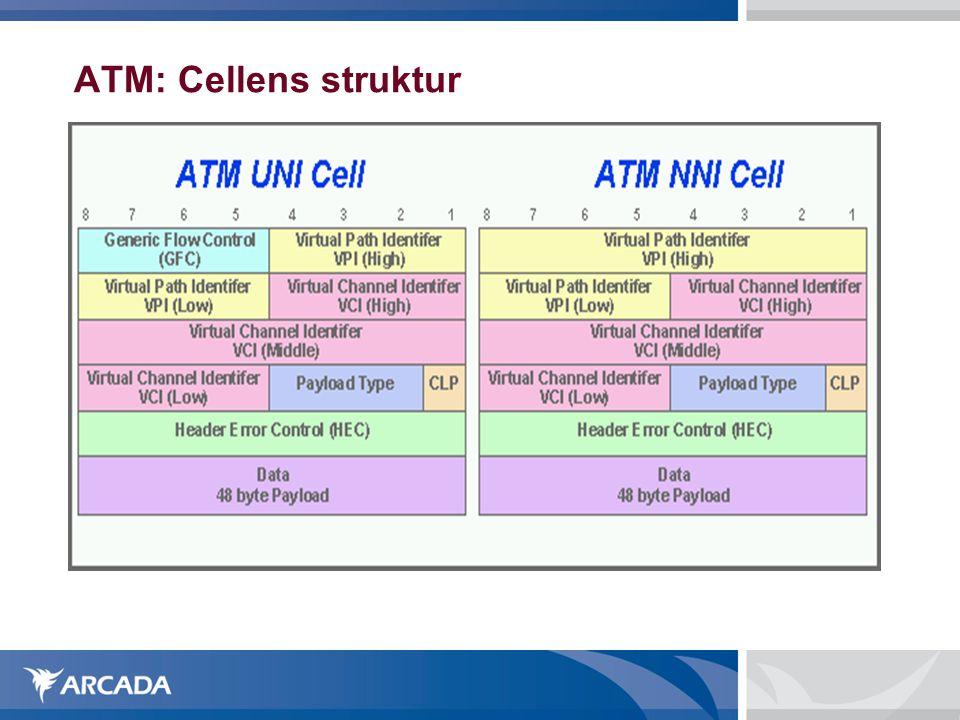 ATM: Cellens struktur