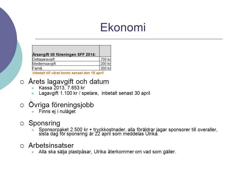  Årets lagavgift och datum Kassa 2013, 7.653 kr Lagavgift 1.100 kr / spelare, inbetalt senast 30 april  Övriga föreningsjobb Finns ej i nuläget  Sp