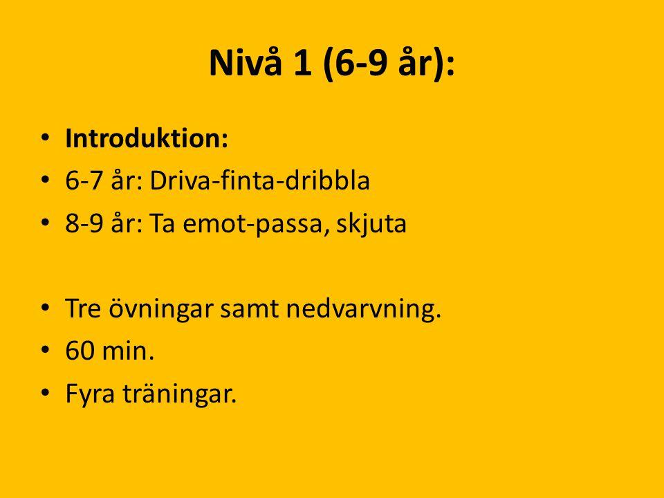 Nivå 1 (6-9 år): Introduktion: 6-7 år: Driva-finta-dribbla 8-9 år: Ta emot-passa, skjuta Tre övningar samt nedvarvning. 60 min. Fyra träningar.