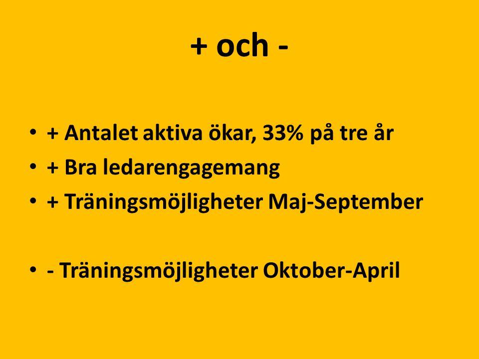 + och - + Antalet aktiva ökar, 33% på tre år + Bra ledarengagemang + Träningsmöjligheter Maj-September - Träningsmöjligheter Oktober-April