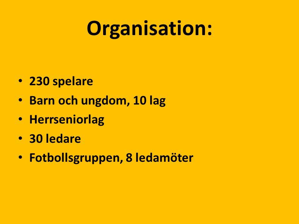 Organisation: 230 spelare Barn och ungdom, 10 lag Herrseniorlag 30 ledare Fotbollsgruppen, 8 ledamöter