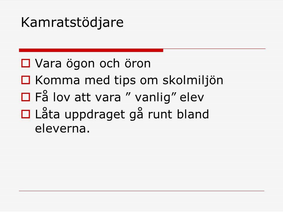Kamratstödjare  Vara ögon och öron  Komma med tips om skolmiljön  Få lov att vara vanlig elev  Låta uppdraget gå runt bland eleverna.