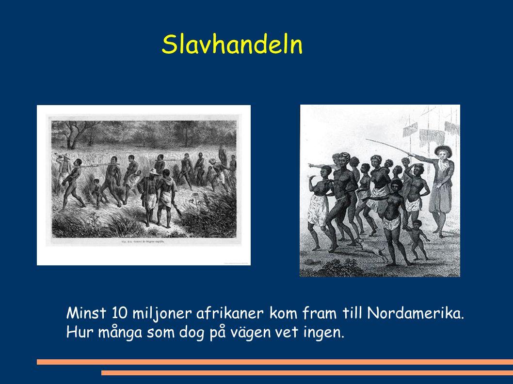 Minst 10 miljoner afrikaner kom fram till Nordamerika. Hur många som dog på vägen vet ingen. Slavhandeln