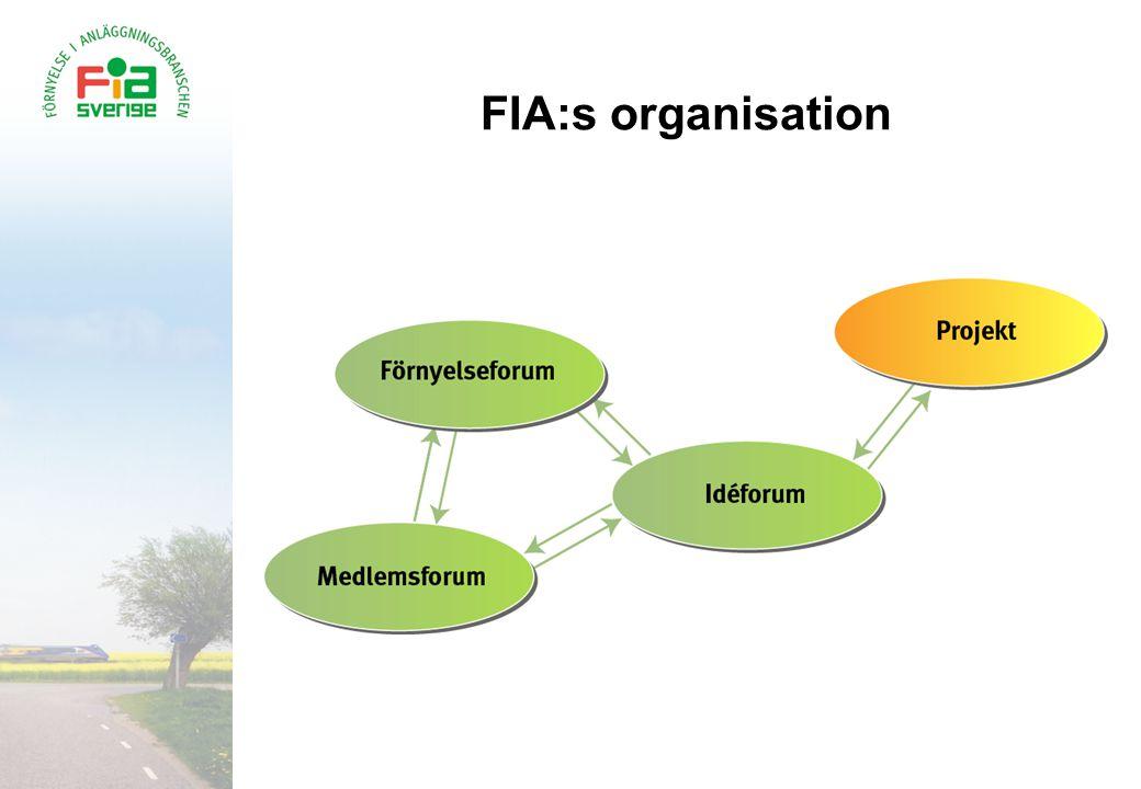 FIA:s organisation