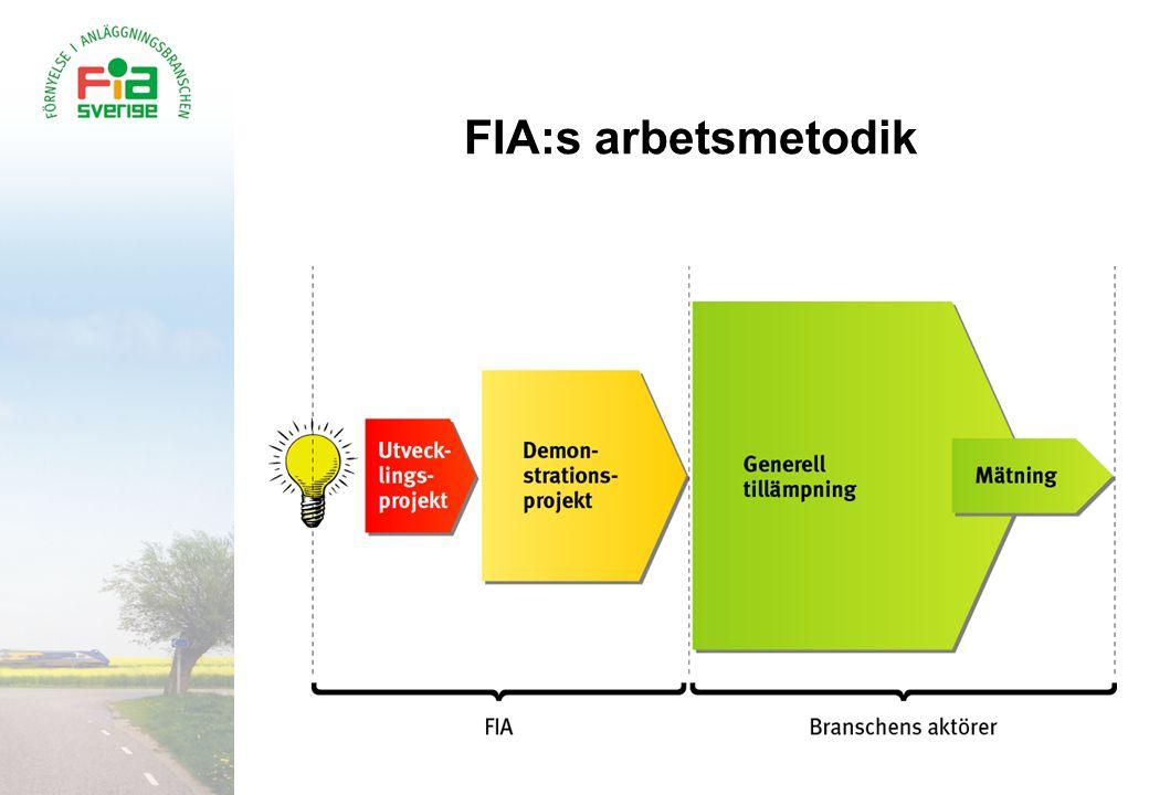 FIA:s arbetsmetodik